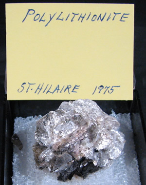 Polylithionite, Mont Saint-Hilaire, Québec, Canada ex Ron Waddell